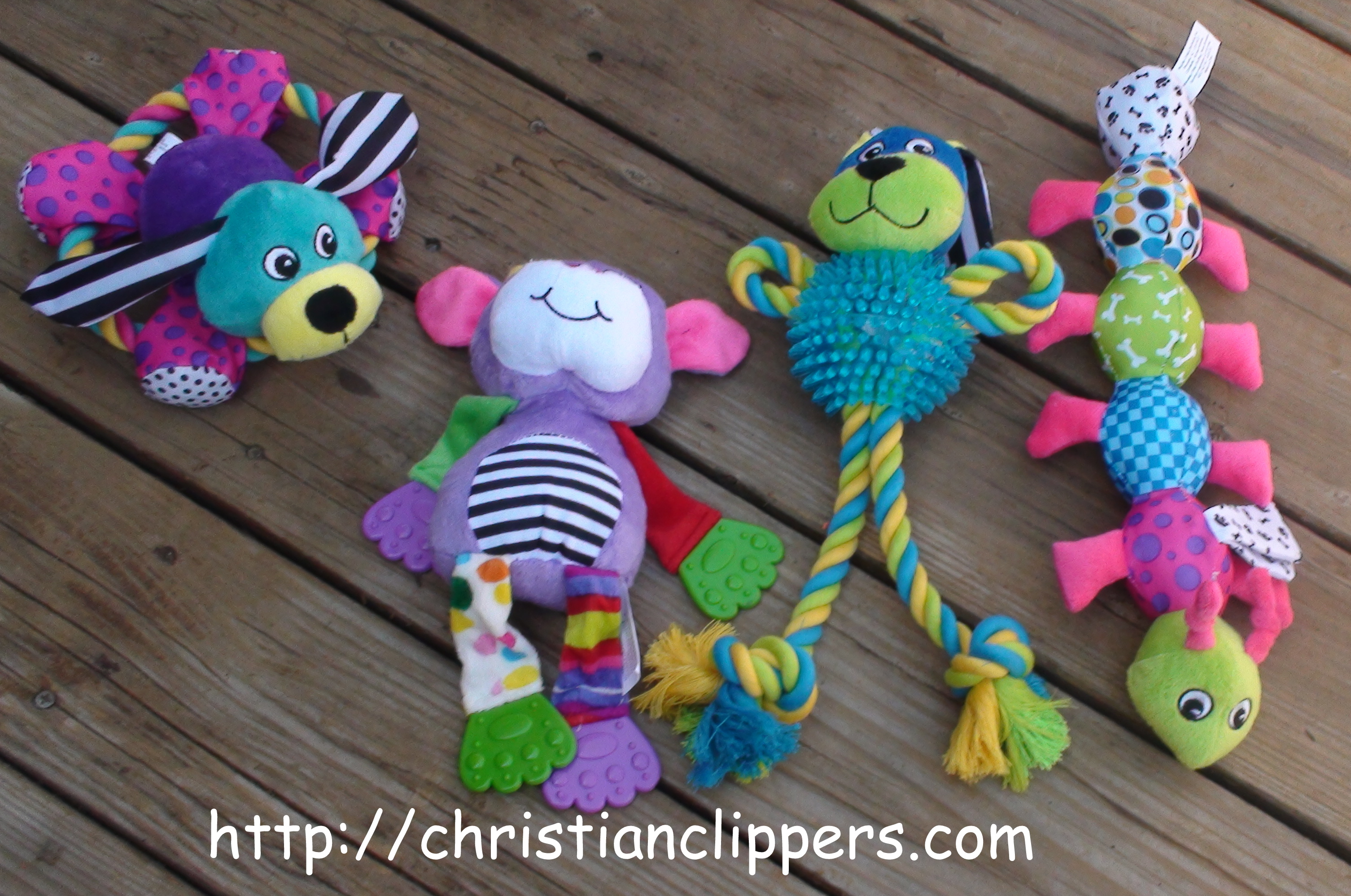 june 2012 christian clippers
